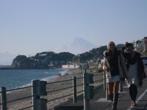 chicks walking and ... Mt. Fuji