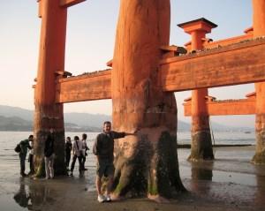 Miyajima Floating Torii Gate taking a break from floating