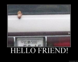 Hello Friend!