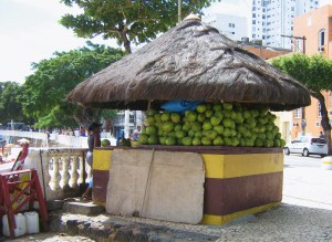 who really puts the lime in the coconut?