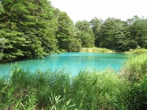 one of the 5 Goshiki-numa ponds in Fukushima